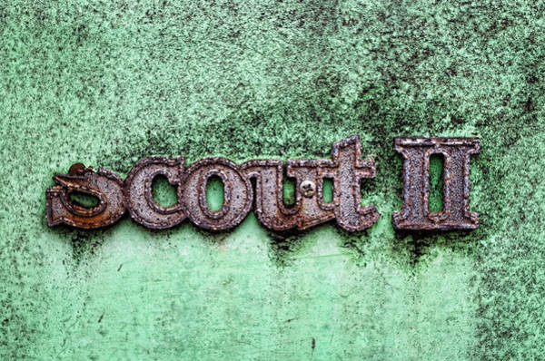 Photograph - Scout II by Sharon Popek