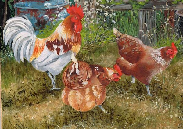Painting - Scratching Pecking  Pals by Val Stokes