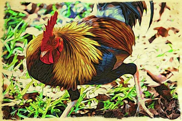Photograph - Scratching Rooster by Alice Gipson