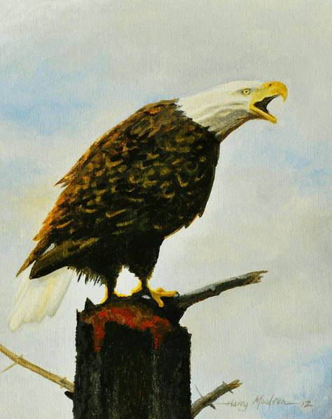 Painting - Screaming Eagle by Harry Moulton