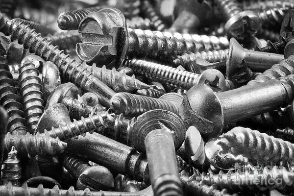 Screw Pile Wall Art - Photograph - Screws by Patrick M Lynch