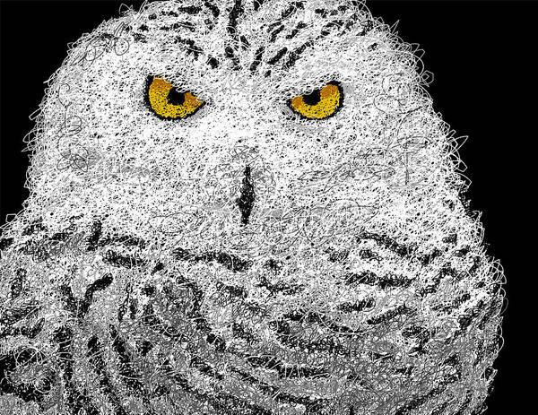 Wall Art - Digital Art - Digital Scribble - Snowy Owl by Nathan Shegrud
