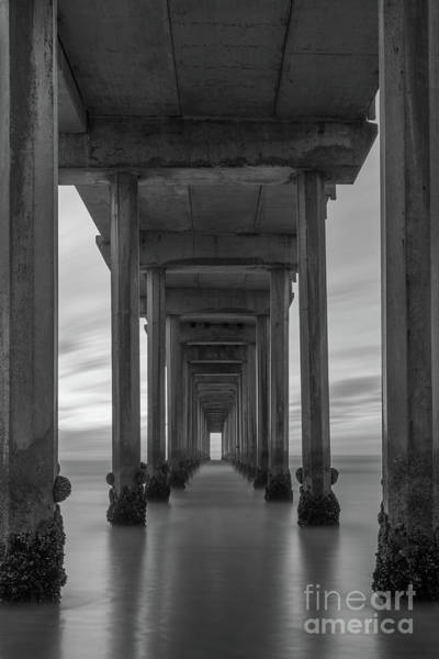 Photograph - Scripps Pier Pillars Bw by Michael Ver Sprill