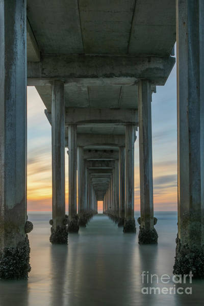 Photograph - Scripps Pier Pillars  by Michael Ver Sprill