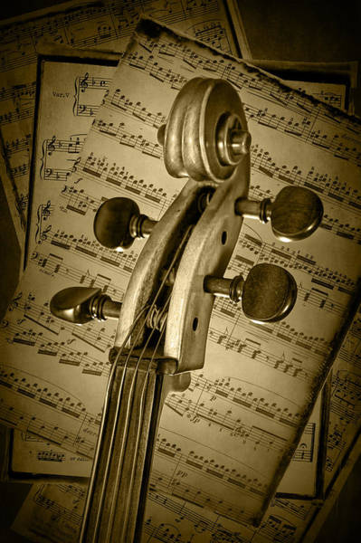 Photograph - Scroll Of A Cello Stringed Instrument In Sepia by Randall Nyhof