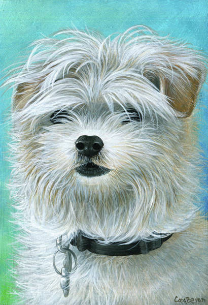 Mutt Painting - Scruff Mutt Named Gordo by Cara Bevan