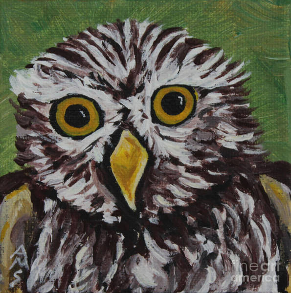 Painting - Scruffy Owl by Annette M Stevenson