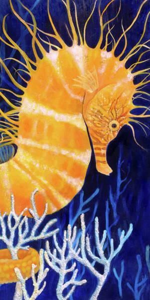 Sea Biscuit Art Print by Samantha Lockwood