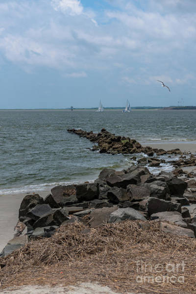 Photograph - Sea Breeze From Fort Moultrie by Dale Powell