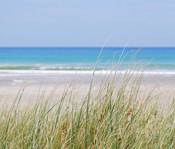 Photograph - Sea Breeze by Jocelyn Friis