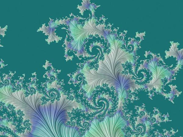 Digital Art - Sea Fan by Susan Maxwell Schmidt