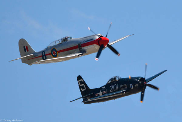 Hawker Sea Fury Photograph - Sea Fury And Bearcat by Tommy Anderson