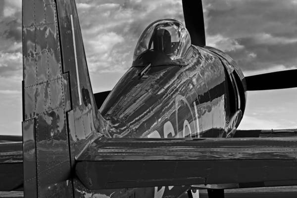 Hawker Sea Fury Photograph - Sea Fury Reflections by Rick Pisio