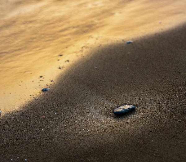 Photograph - Sea Gold by Gabriel Israel
