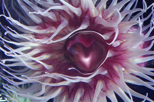 Wall Art - Digital Art - Sea Heart by Linda Sannuti