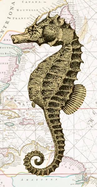 Nautical Digital Art - Sea Horse Nautical Chart by Erin Cadigan