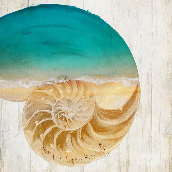 Nautilus Wall Art - Painting - Sea In My Hand by Mindy Sommers