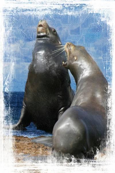 Digital Art - Sea Lion Conversation by Rusty R Smith