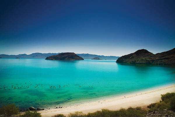 Sea Of Cortez Photograph - Sea Of Cortez by Marcel Kaiser