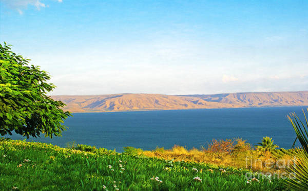 Biblical Photograph - Sea Of Galilee Israel by Laura D Young