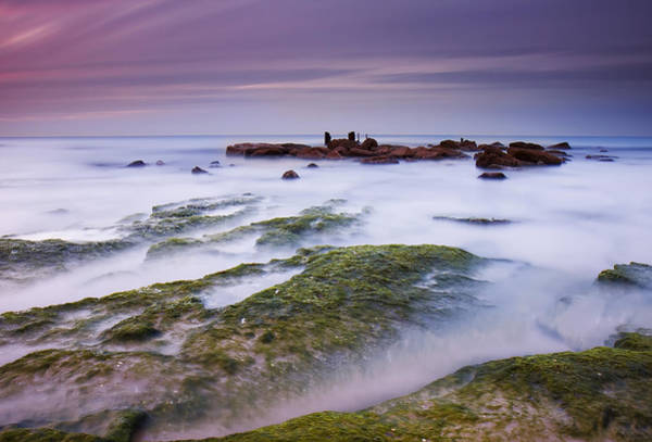 Silky Wall Art - Photograph - Sea Of Milk by Amnon Eichelberg
