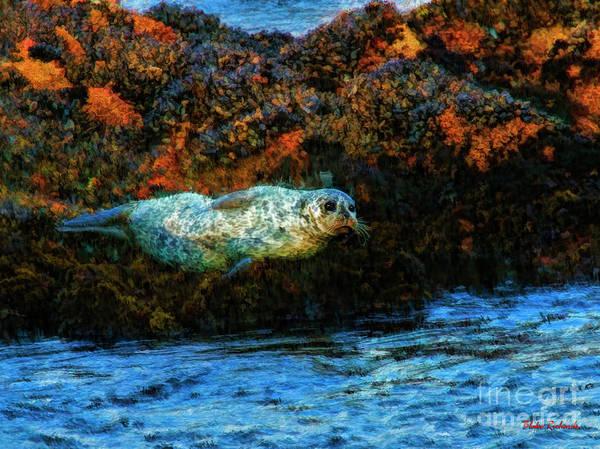 Photograph - Sea Otter At Sunset by Blake Richards