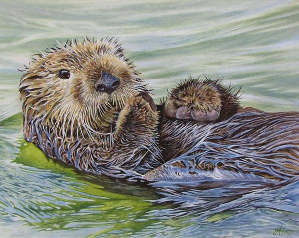 Painting - Sea Otter by Greg and Linda Halom