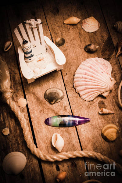 Wood Planks Photograph - Sea Shell Decking by Jorgo Photography - Wall Art Gallery