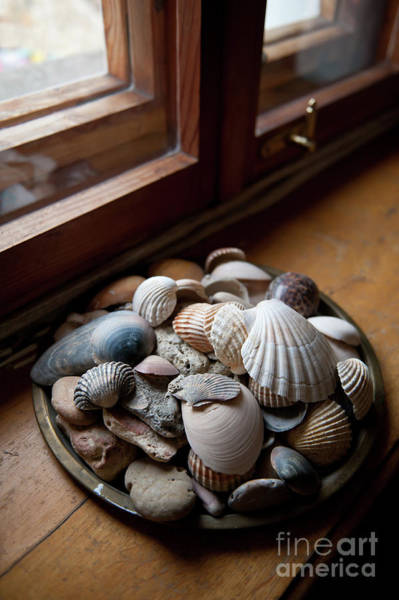 Wall Art - Photograph - Sea Shells And Stones On Windowsill by Arletta Cwalina
