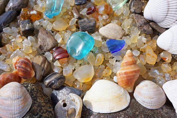 Wall Art - Photograph - Sea Shells Art Prints Blue Seaglass Sea Glass Coastal by Baslee Troutman Art Prints
