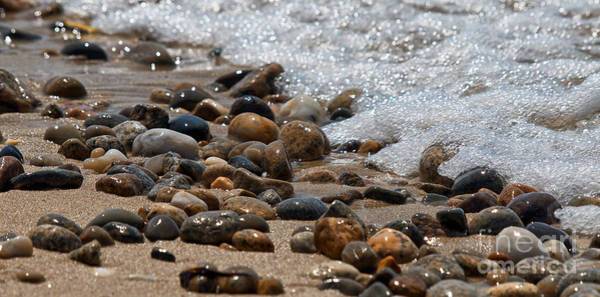 Photograph - Sea Shore Stones by Mark Miller
