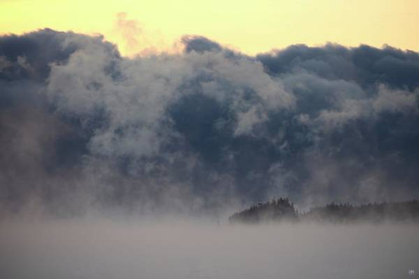 Photograph - Sea Smoke At Owls Head Detail by John Meader