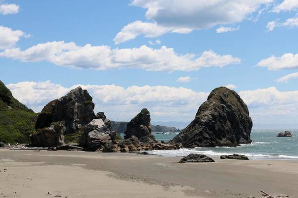 Photograph - Sea Stacks At Harris Beach - 2 by Christy Pooschke