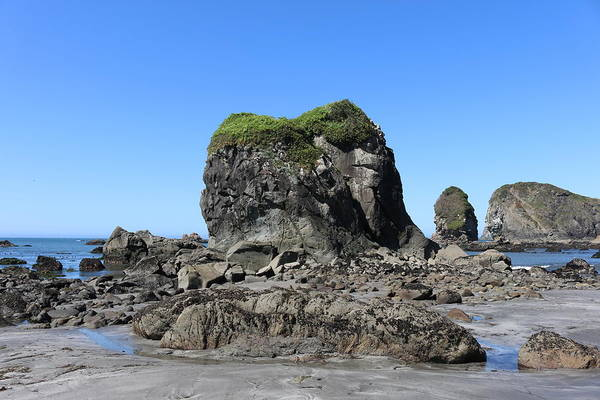 Photograph - Sea Stacks At Harris Beach - 6 by Christy Pooschke