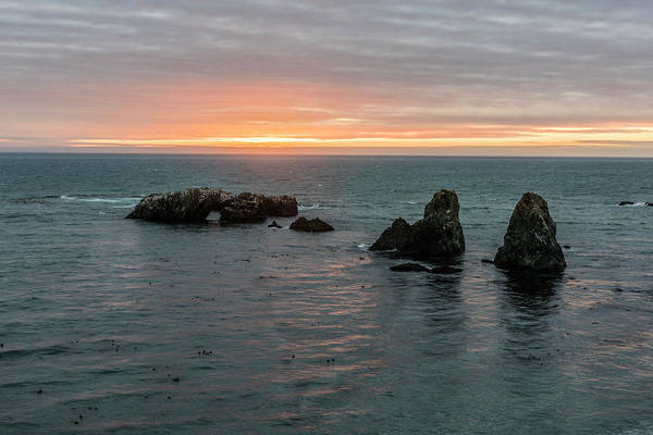 Sea Stacks Wall Art - Photograph - Sea Stacks In Sea Ranch by Jon Glaser