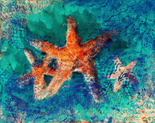 Photograph - Sea Stars With Poem by Micki Findlay