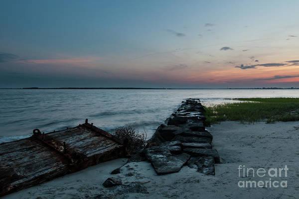 Photograph - Sea Treasure On Sullivan's Island Beach by Dale Powell