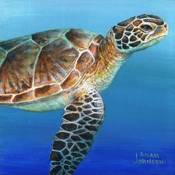Painting - Sea Turtle 2 Of 3 by Adam Johnson