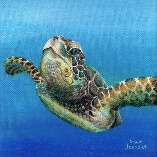 Painting - Sea Turtle 3 Of 3 by Adam Johnson