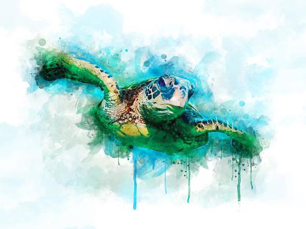 Wall Art - Digital Art - Sea Turtle  by Aged Pixel