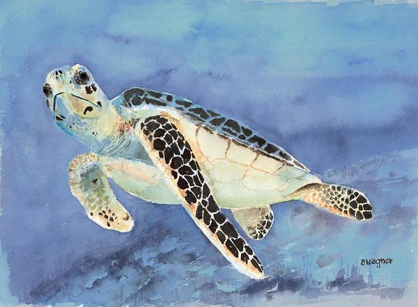 Sea Creature Painting - Sea Turtle by Arline Wagner