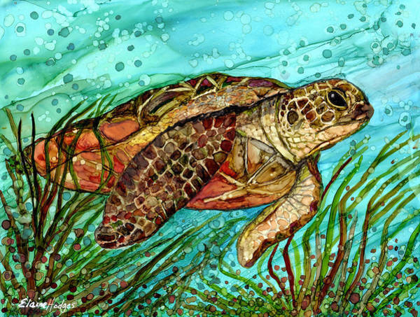 Wall Art - Painting - Sea Turtle by Elaine Hodges