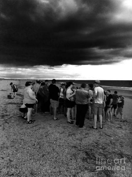 Photograph - Sea Turtle Release Gathering  by WaLdEmAr BoRrErO