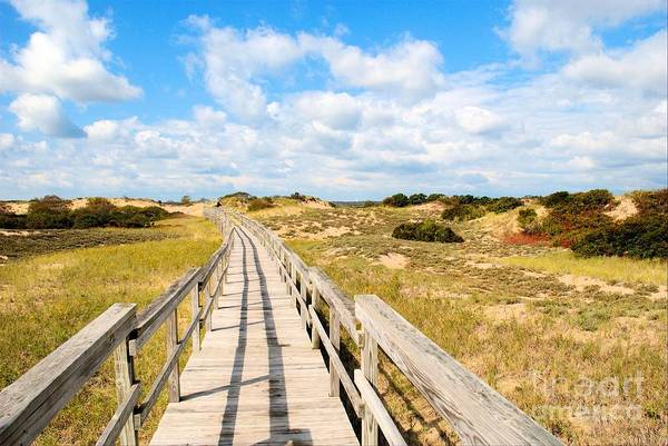Photograph - Seabound Boardwalk by Debbie Stahre