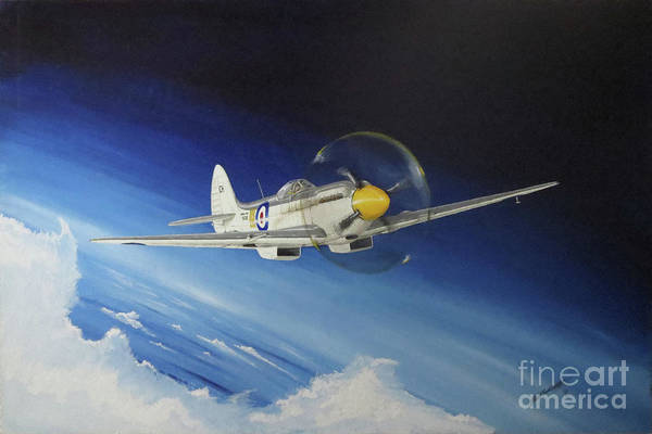 Hornbill Painting - Into The Blue by Simon Cockett