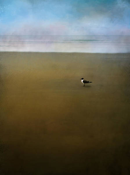 Painting - Seagull At Ocean by Christina VanGinkel