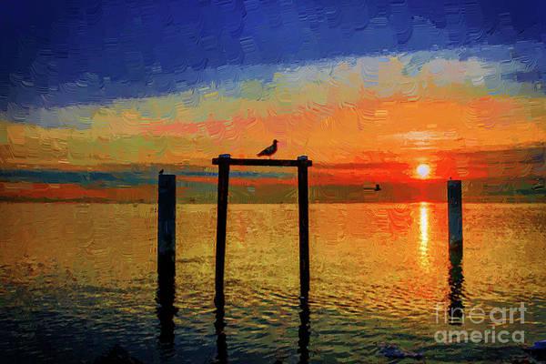 Evening Wall Art - Mixed Media - Seagull At Sunset 1 by Viktor Birkus