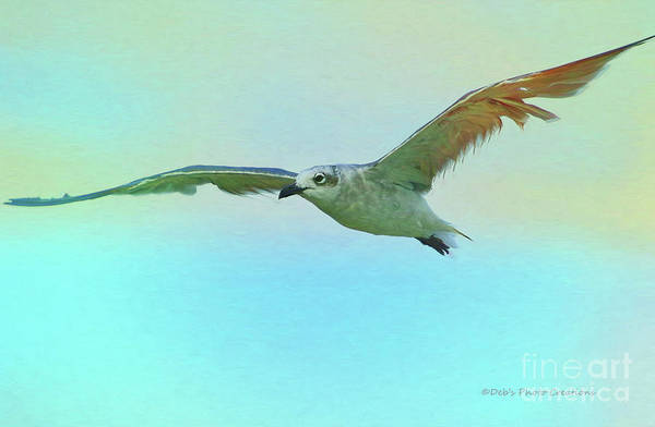 Painting - Seagull At The Beach by Deborah Benoit