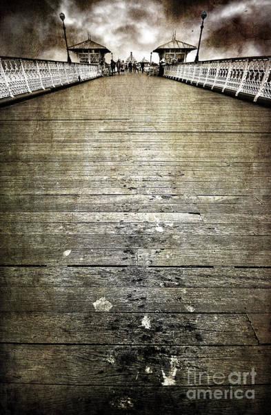 Wall Art - Photograph - Seagull Bombing Run by Meirion Matthias