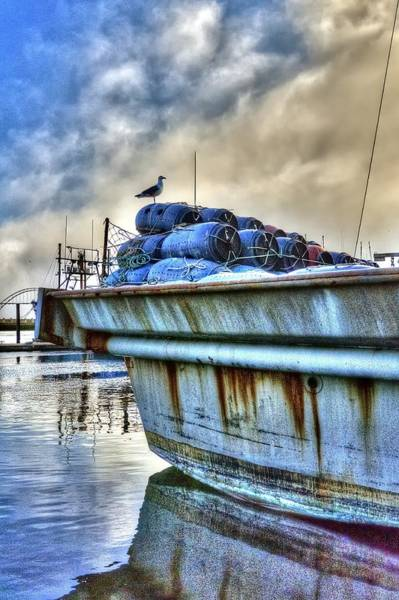 Photograph - Seagull On Stern 2384 by Jerry Sodorff